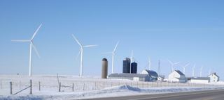 Photo of Montfort wind farm, March 2008